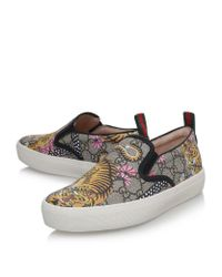 Gucci - Brown Dublin Tiger Skate Sneaker - Lyst