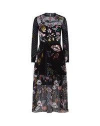 Markus Lupfer - Black Embroidered Velvet Sheer Midi Dress - Lyst
