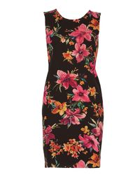 Izabel London - Black Floral Bodycon Dress - Lyst