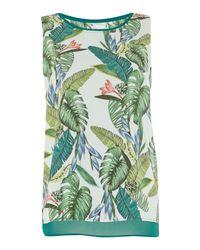 Salsa | Green Palm Tree Top | Lyst