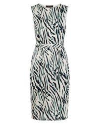 Jaeger - Blue Zebra Print Jersey Dress - Lyst