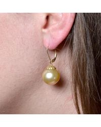 Donna Pizarro Designs - Multicolor 14kt Golden South Sea Pearl Earrings - Lyst
