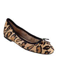 Sam Edelman | Multicolor Felicia Ballet Flat Leopard Hair Calf | Lyst