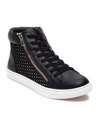 Steve Madden | Elyka Black High Top Sneaker | Lyst