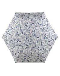 Radley - Multicolor Data Dog Mini Telescopic Umbrella - Lyst
