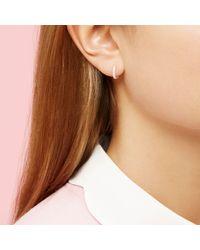Estella Bartlett - Metallic Cubic Zirconia Pave Set Hoop Earrings - Lyst