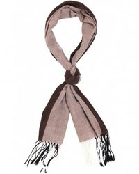 Ascot Accessories - Brown Cashmere Ascot Scarf - Lyst