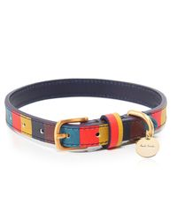 Paul Smith - Blue Striped Leather Dog Collar - Lyst