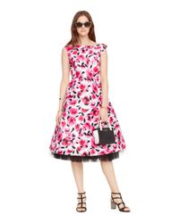kate spade new york   Pink Rosebud Fit And Flare Dress   Lyst