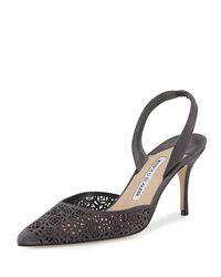 Manolo Blahnik - Black Carolyne Laser-cut Mid-heel Halter Pump - Lyst