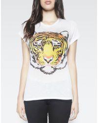 Lauren Moshi - White Edda Color Wild Tiger Vintage Tee Roll Up Slv - Lyst