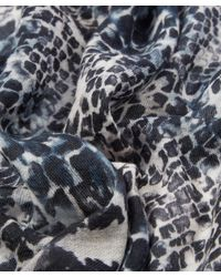 Lily and Lionel - Blue Marilyn Cashmere Scarf - Lyst