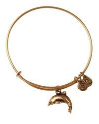 ALEX AND ANI - Metallic Dolphin Charm Bangle Bracelet - Lyst