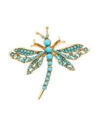 Kenneth Jay Lane - Blue Turqouise Dragonfly Brooch - Lyst