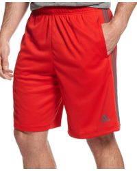 Adidas Originals   Red Men's Climalite Essential Shorts for Men   Lyst