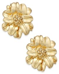 Charter Club | Metallic Gold-tone Floral Stud Earrings | Lyst