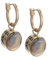 Kenneth Cole - Multicolor Earrings, Gold-tone Abalone Drop - Lyst