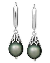 Macy's - Multicolor Pearl Earrings, Sterling Silver Tahitian Cultured Pearl Leverback Drop (8mm) - Lyst