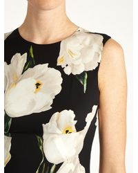 Dolce & Gabbana - Black Tulip-print Stretch-silk Charmeuse Dress - Lyst
