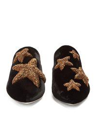 Sanayi 313 - Black Stelle Embroidered Velvet Slipper Shoes - Lyst