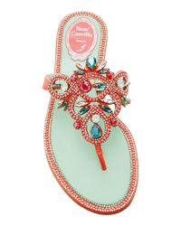Rene Caovilla - Red M'o Exclusive: Tourmaline Thong Sandal - Lyst