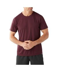 Smartwool - Purple Merino 150 Pattern Tee for Men - Lyst