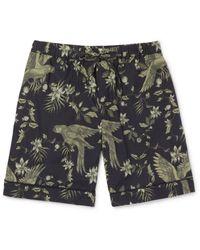 Desmond & Dempsey - Black Printed Cotton Pyjama Shorts for Men - Lyst