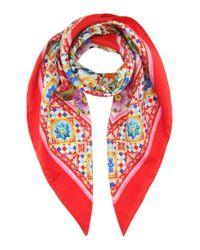 Dolce & Gabbana   Red Printed Silk Scarf   Lyst