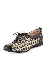 Taryn Rose - Black Trudee Woven Lace-up Sneaker - Lyst