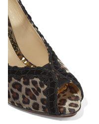 Charlotte Olympia - Multicolor Vida Leopard-print Velvet Pumps - Lyst