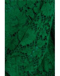 Dolce & Gabbana Green Crystal-embellished Corded Lace Gown
