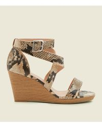 86ca24b73677 New Look Wide Fit Brown Faux Snakeskin Strappy Wedges in Brown - Lyst