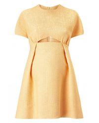 Emilia Wickstead   Metallic Tinker Cut-out Dress   Lyst