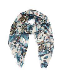 Burberry   Blue Floral Print Wool & Silk Scarf   Lyst