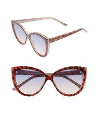 Circus by Sam Edelman   Brown 55mm Cat Eye Sunglasses   Lyst