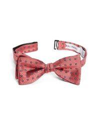 Calibrate | Red Descrete Dot Silk Bow Tie for Men | Lyst