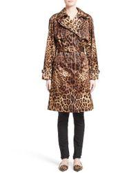 Dolce & Gabbana   Natural Leopard Print Silk Trench Coat   Lyst
