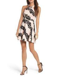 Sequin Hearts | Black Flocked Scuba Knit Halter Dress | Lyst