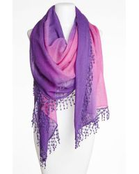 La Fiorentina | Pink 'ombre Lace' Cashmere Scarf | Lyst