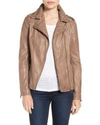 Lamarque Brown Terri Lambskin Leather Moto Jacket