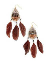 Nakamol - Metallic Teardrop Feather Earrings - Lyst