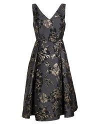 Adrianna Papell | Black Jessa Fit & Flare Dress | Lyst