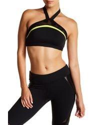 Trina Turk - Black Lace & Shine Halter Sports Bra - Lyst