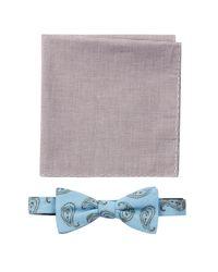 Original Penguin - Blue Bow Tie & Pocket Square Set for Men - Lyst