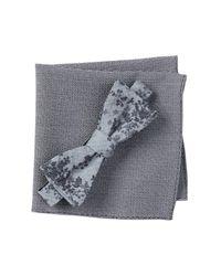 Original Penguin - Blue Mae Floral Bow Tie & Pocket Square 2-piece Set for Men - Lyst