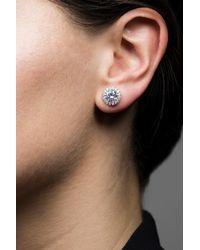 CZ by Kenneth Jay Lane - Metallic Round Cz & Halo Set Cz Stud Earrings - Lyst