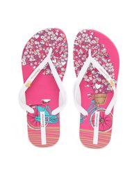 Ipanema - Pink Bouquet Flip Flop - Lyst