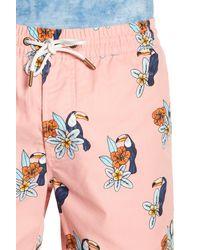 Barney Cools - Pink Toucan Amphibious Swim Trunks for Men - Lyst