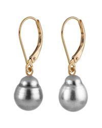 Splendid | Metallic 14k Gold Black Tahitian Pearl Earrings | Lyst