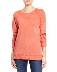 Caslon | Multicolor Burnout Sweatshirt | Lyst
